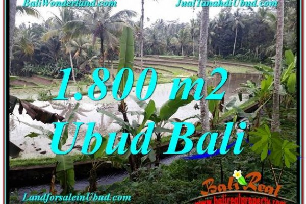 FOR SALE Beautiful PROPERTY 1,800 m2 LAND IN UBUD BALI TJUB616