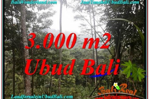 Beautiful PROPERTY 3,000 m2 LAND SALE IN Ubud Payangan TJUB617