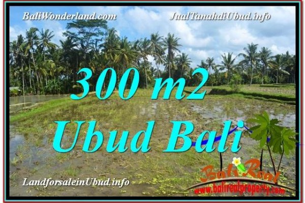 FOR SALE 300 m2 LAND IN UBUD TJUB619