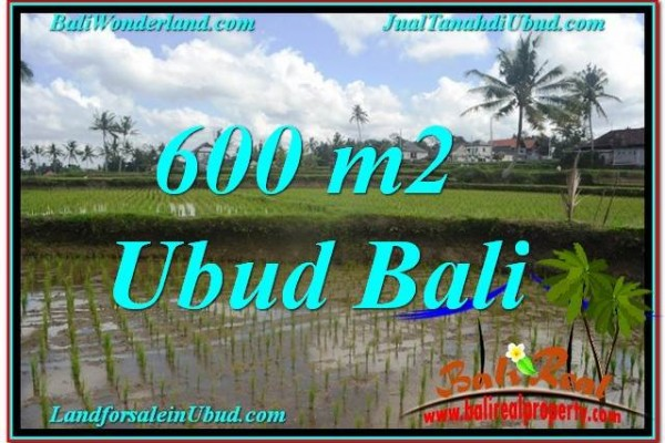 Magnificent PROPERTY 600 m2 LAND IN Ubud Pejeng BALI FOR SALE TJUB621