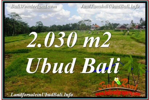 Exotic 2,030 m2 LAND IN UBUD BALI FOR SALE TJUB623