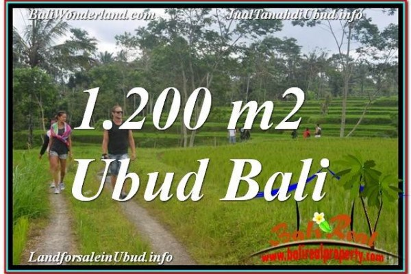 Exotic 1,200 m2 LAND SALE IN UBUD TJUB624