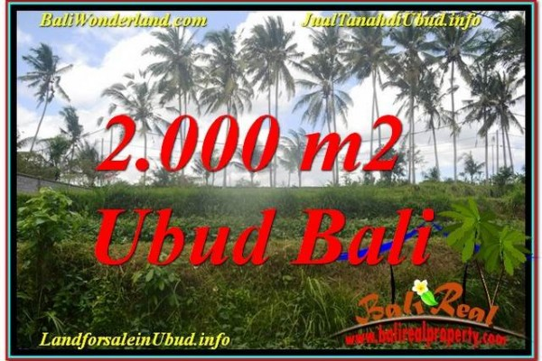 Magnificent UBUD BALI 2,000 m2 LAND FOR SALE TJUB625
