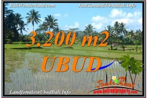 FOR SALE Exotic PROPERTY 3,200 m2 LAND IN UBUD BALI TJUB628