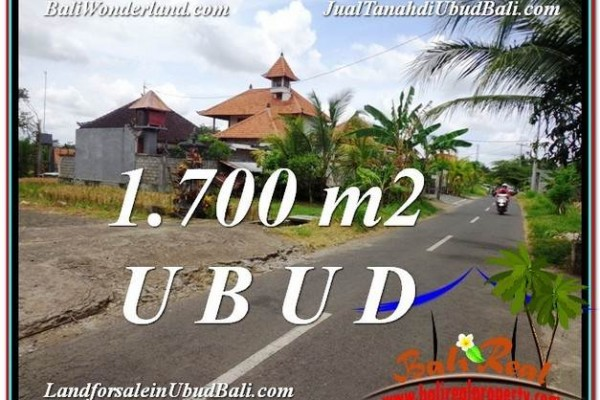 Affordable 1,700 m2 LAND FOR SALE IN UBUD BALI TJUB588