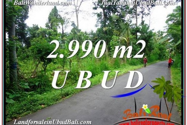 Magnificent 2,990 m2 LAND FOR SALE IN Ubud Tegalalang TJUB591