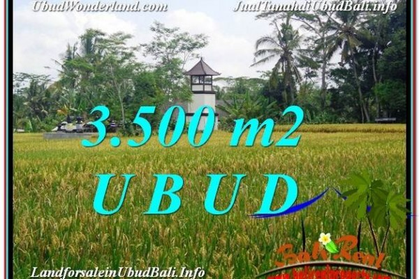 FOR SALE Affordable PROPERTY 3,500 m2 LAND IN UBUD BALI TJUB596