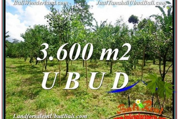 FOR SALE Magnificent PROPERTY 3,600 m2 LAND IN Ubud Tegalalang TJUB599