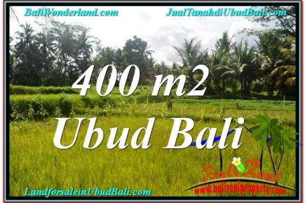 Magnificent PROPERTY 400 m2 LAND IN Ubud Pejeng BALI FOR SALE TJUB627