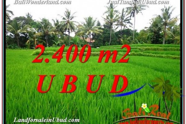 Affordable 2,400 m2 LAND SALE IN UBUD BALI TJUB587