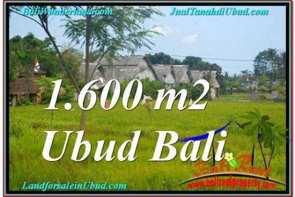 Magnificent PROPERTY 1,600 m2 LAND IN Sentral / Ubud Center FOR SALE TJUB633