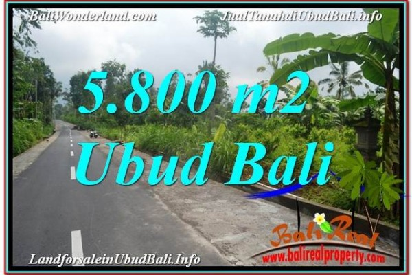 Ubud Tegalalang BALI LAND FOR SALE TJUB637