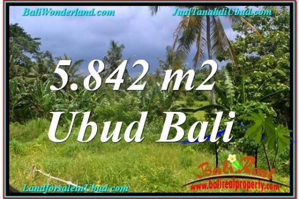 Affordable PROPERTY 5,842 m2 LAND FOR SALE IN UBUD TJUB638