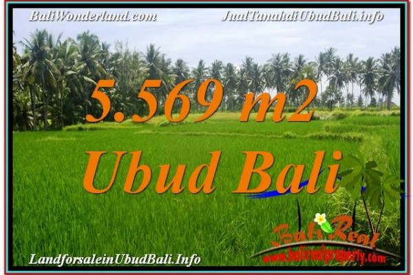 Beautiful 5,569 m2 LAND IN UBUD BALI FOR SALE TJUB642