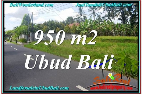 FOR SALE Exotic PROPERTY 950 m2 LAND IN UBUD BALI TJUB648