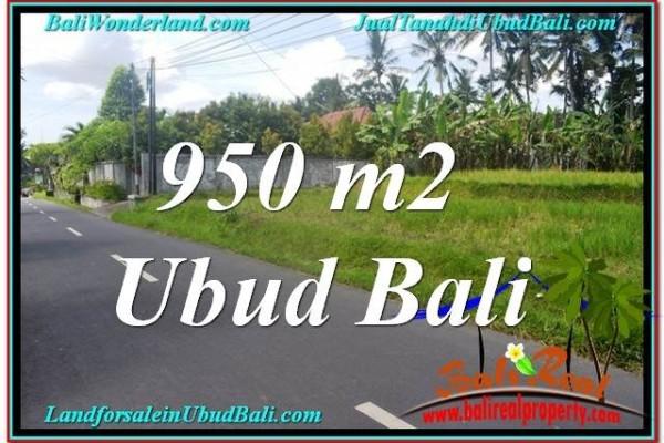 FOR SALE Affordable PROPERTY LAND IN Sentral / Ubud Center BALI TJUB648