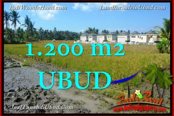 Affordable PROPERTY UBUD 1,200 m2 LAND FOR SALE TJUB663