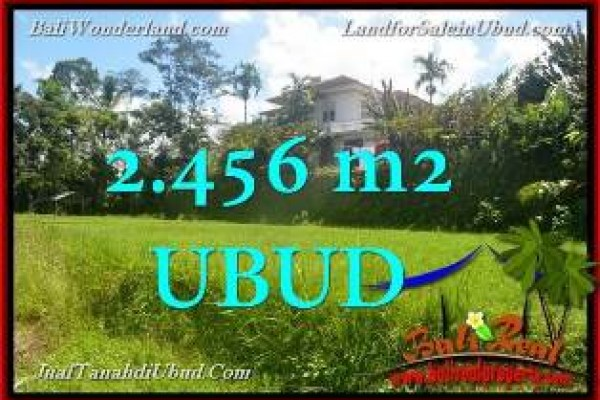 FOR SALE Affordable PROPERTY 2,456 m2 LAND IN Ubud Tegalalang BALI TJUB654
