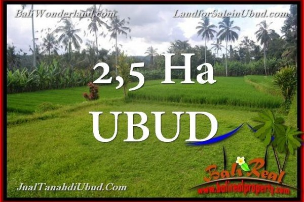 Beautiful PROPERTY 25,000 m2 LAND SALE IN UBUD TJUB655
