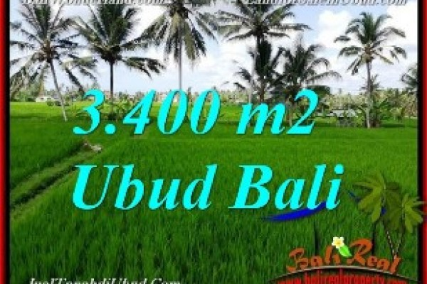 Exotic PROPERTY 3,400 m2 LAND FOR SALE IN UBUD BALI TJUB656