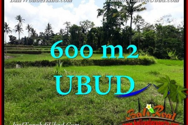 Affordable PROPERTY UBUD 600 m2 LAND FOR SALE TJUB657