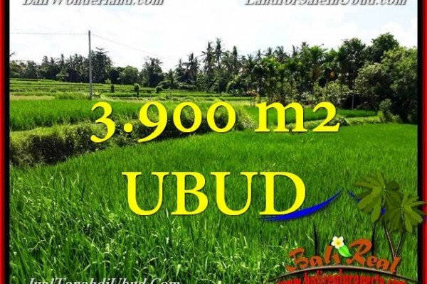 Exotic UBUD 3,900 m2 LAND FOR SALE TJUB658