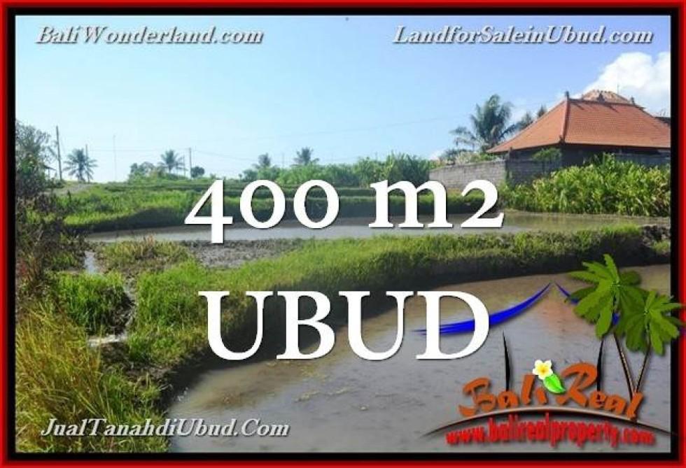 Magnificent PROPERTY Ubud Gianyar 400 m2 LAND FOR SALE TJUB659