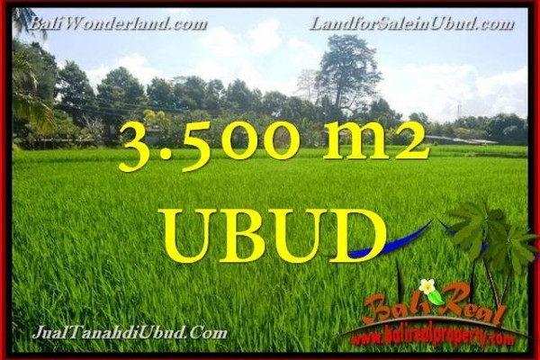FOR SALE Beautiful 3,500 m2 LAND IN UBUD TJUB660
