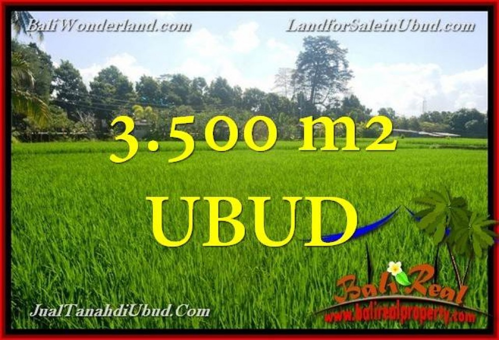 Magnificent PROPERTY LAND FOR SALE IN UBUD TJUB660