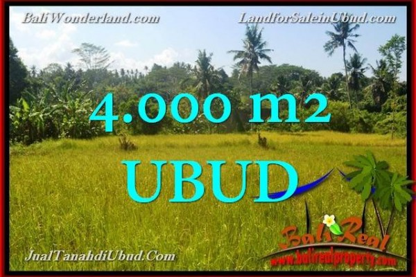 FOR SALE Magnificent PROPERTY 4,000 m2 LAND IN UBUD TJUB661