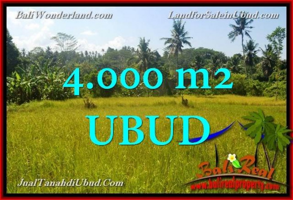 Beautiful PROPERTY 4,000 m2 LAND SALE IN Ubud Gianyar TJUB661