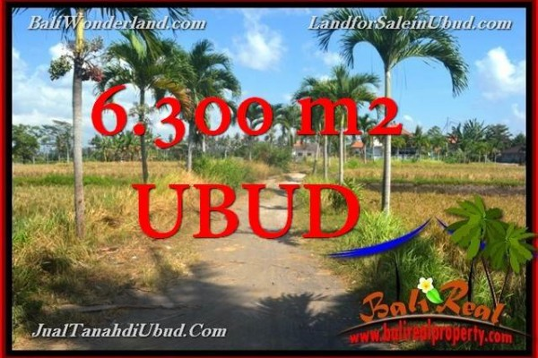 Beautiful PROPERTY 6,300 m2 LAND FOR SALE IN Sentral Ubud TJUB662
