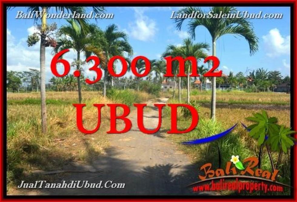 Beautiful PROPERTY 6,300 m2 LAND FOR SALE IN Sentral Ubud TJUB662