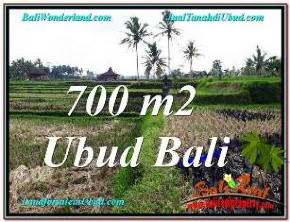 FOR SALE Affordable LAND IN SENTRAL UBUD BALI TJUB666