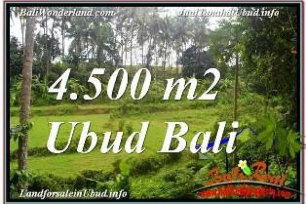 FOR SALE Affordable PROPERTY LAND IN UBUD TJUB675