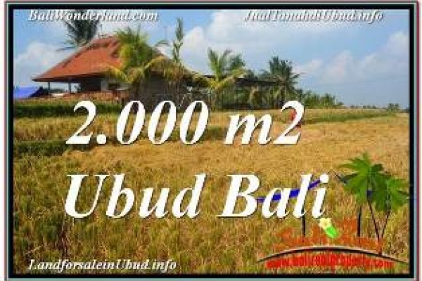 Exotic UBUD BALI 2,000 m2 LAND FOR SALE TJUB669