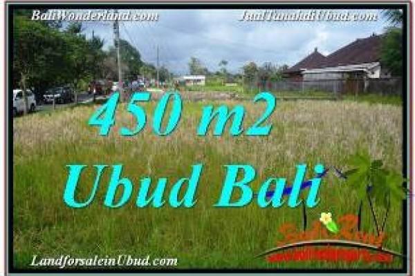 Beautiful PROPERTY 450 m2 LAND IN SENTRAL UBUD BALI FOR SALE TJUB671