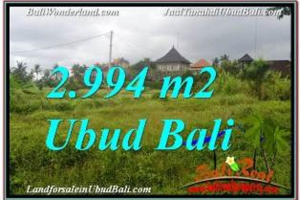 FOR SALE 2,994 m2 LAND IN UBUD BALI TJUB672