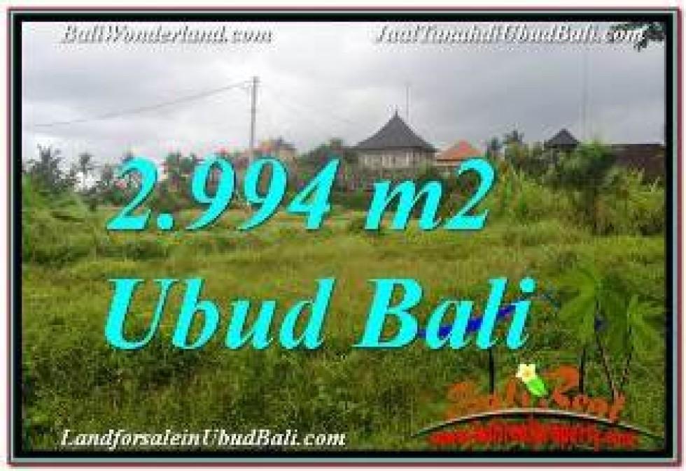 FOR SALE 2,994 m2 LAND IN UBUD BALI TJUB672