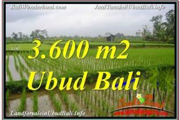 Affordable UBUD LAND FOR SALE TJUB673