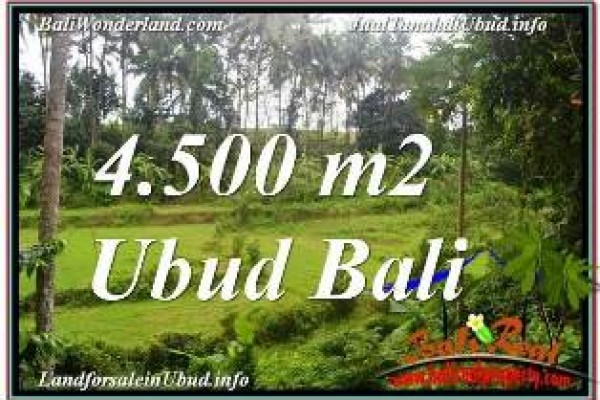 Affordable 4,500 m2 LAND FOR SALE IN SENTRAL UBUD TJUB675