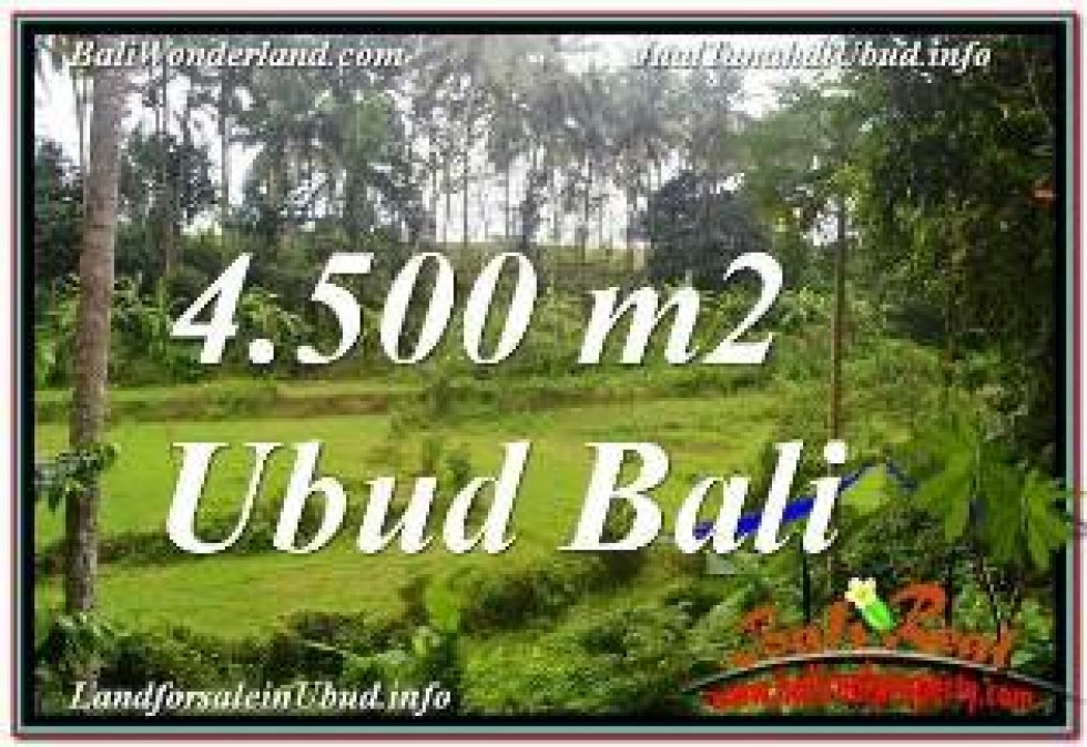 Magnificent LAND FOR SALE IN UBUD BALI TJUB675