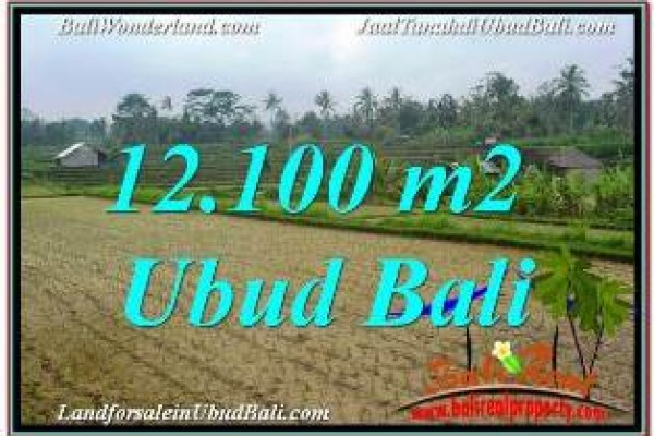 Magnificent 12,100 m2 LAND SALE IN UBUD PAYANGAN TJUB677