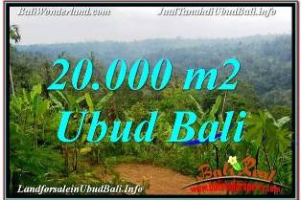 Exotic PROPERTY 20,000 m2 LAND SALE IN UBUD PAYANGAN BALI TJUB678