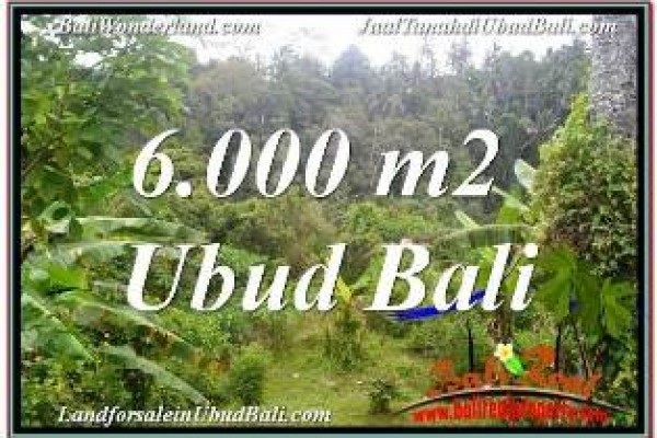 Affordable PROPERTY 6,000 m2 LAND IN UBUD TEGALALANG FOR SALE TJUB682