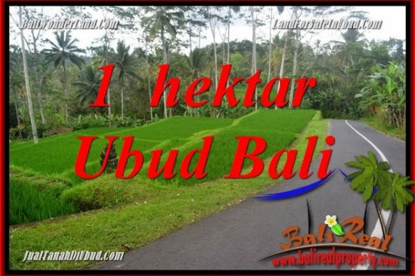 FOR sale Magnificent Property Land in Ubud TJUB683