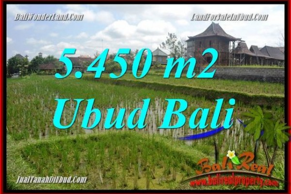Exotic Property Land in Ubud Bali for sale TJUB688
