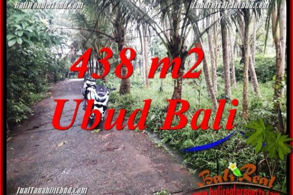 Magnificent Property 438 m2 Land in Ubud Pejeng Bali for sale TJUB689