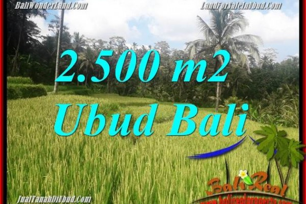 Exotic Land in Ubud for sale TJUB690