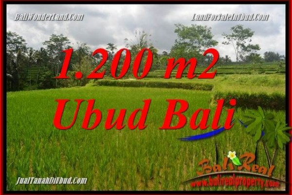 Magnificent Land sale in Ubud TJUB693
